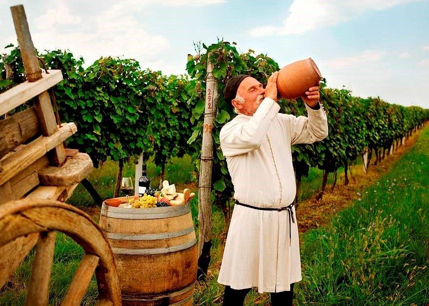 Rtweli - Weinlese in Georgien, Wein lesen und trinken
